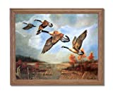 Canadian Geese Lake Marsh Home Decor Wall Picture Oak Framed Art Print