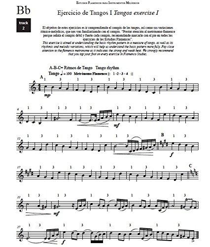 Estudios Flamencos para Instrumentos Melódicos