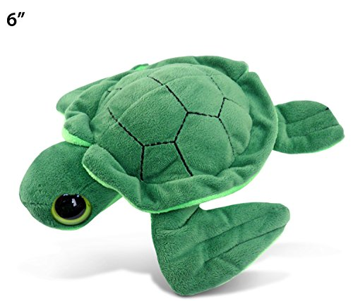 Puzzled Sea Turtle Big Eye Plush 6 Inch