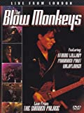 The Blow Monkeys - Live from London [DVD] [2012] [NTSC]