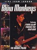 The Blow Monkeys - Live from London [DVD] [2012] [NTSC]