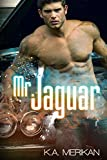 Mr. Jaguar (contemporary gay cinderfella erotic romance)