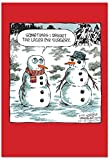 B2532XSG Box Set of 12 Laser Eye Surgery Unique Humor Christmas Greeting Cards with Envelopes