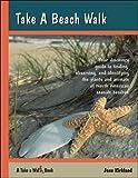 Take a Beach Walk (Take a Walk series)