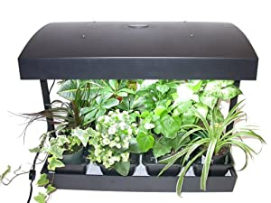 grow light indoor garden for herbs vegetables fruits and flowers by sunblaster 24 x17 x14. Black Bedroom Furniture Sets. Home Design Ideas
