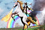 Dawn sky Living room home wall decoration sill fabric poster fantasy unicorn funny cat rider animal humor