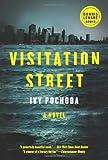Visitation Street: A Novel (Dennis Lehane)