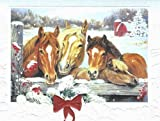 "Horse Trio Boxed Christmas Cards ""Friendly Neighbors"""