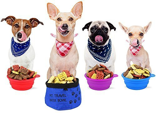 collapsible-silicone-bowls-and-collapsible-travel-water-bowl-for-pets-varying-colors-by-bodhi-produc