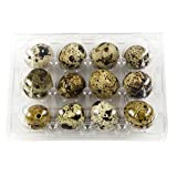 Quail Egg Cartons 12 Count Holder, Made of Clear Plastic (100 Pack)