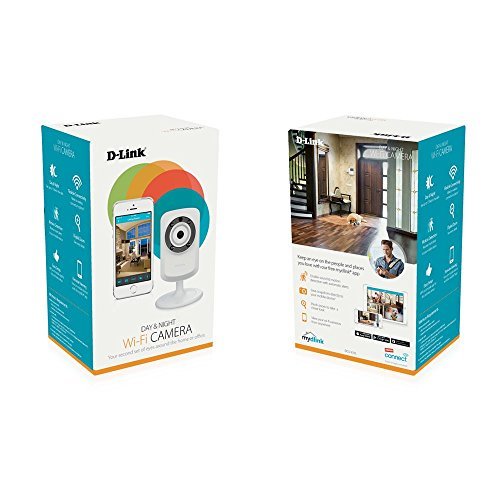 D-Link Wireless Day/Night Network Sur...