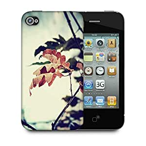 Snoogg Dry Leaves On Tree Designer Protective Phone Back Case Cover For Apple Iphone 4