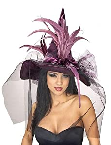 Rubies Costumes Women's Feather Adult Witch Hat by Rubie's Costume Co