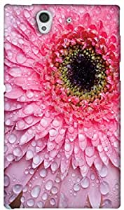 Timpax protective Armor Hard Bumper Back Case Cover. Multicolor printed on 3 Dimensional case with latest & finest graphic design art. Compatible with Sony L36H - Sony 36 Design No : TDZ-21567