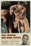 Cool Hand Luke Poster Italian 27x40 Paul Newman George Kennedy J.D. Cannon