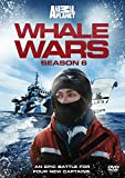 Whale Wars - Series 6