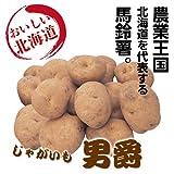 【ホクホク感満点】 北海道産 男爵 5kg箱