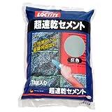 LOCTITE(ロックタイト) 超速乾セメント 灰色 1kg DCG-01K