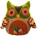14X13 Owl Pillow