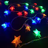 Minger Led Star String Light Fairy String Lights 33ft 100 Leds Starry String Lights Halloween Decoration Lights for Holiday, Party, Christmas, New Year, Wedding, Patio, Garden, Lawn(Multi-colored)