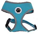 Small Turquoise Cute Padded Reflective Mesh Dog Puppy Harness No Pull Pet Cat Harnesses,Small Size