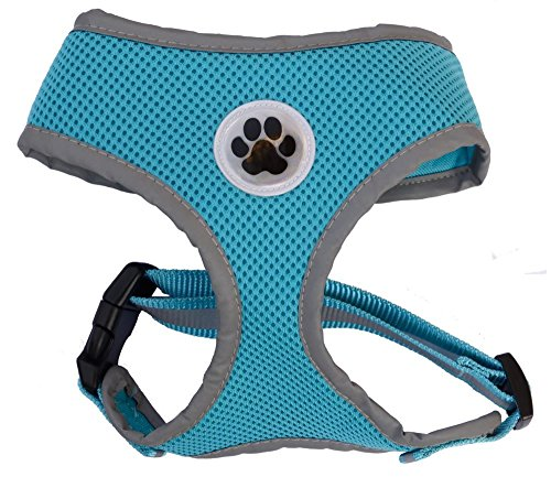 Reflective-Mesh-Soft-Dog-Harness-Safe-Harness-No-Pull-Walking-Pet-Harnesses-for-Dogs-100-Satisfaction-Gaurantee