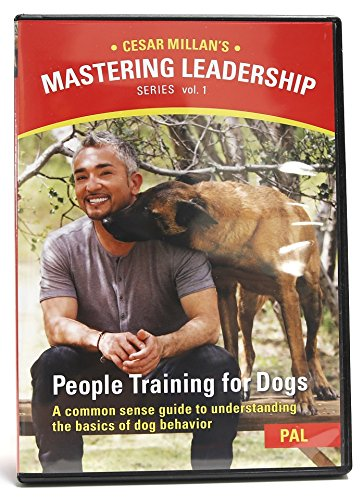 I just received the Cesar Millan's Mastering Leadership DVD Set. Do you enjoy watching Cesar Millan the Dog Whisperer on the National Geographic Channel? This DVD set is not exactly like the Dog Whisperer where he goes around to different homes solving problems.
