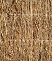 Standard Brushwood Thatch Screening - 4 metre rolls 1.2m high