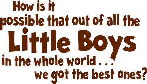 Design with Vinyl Design 159 - Brown How Is It Possible that Out Of All the Little Boys In the Whole World We Got the Best Ones? Wall Sticker, Brown