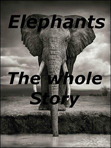Elephants The whole Story
