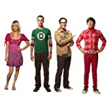 RoomMates Big Bang Theory Peel and Stick Wall Decals