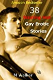 img - for 38 Sizzling Hot Gay Erotic Stories: Boxed Set book / textbook / text book