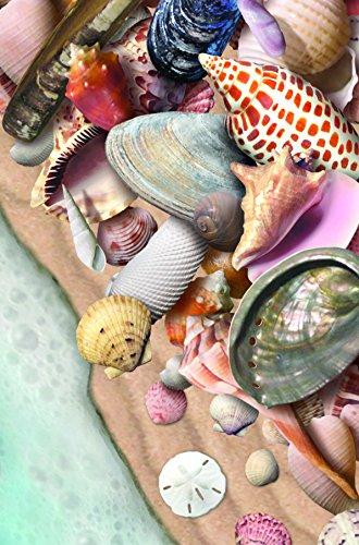 Gift Trenz Seashells- Motion Magnet