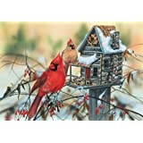 Cardinal's Rustic Retreat 500pc Jigsaw Puzzle by Janene Grende