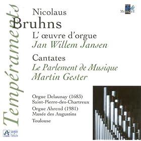 Bruhns: L'oeuvre d'orgue - Cantates (Orgue Delaunay St Pierre-des-Chartreux, orgue Ahrend Mus�e des Augustins, Toulouse)