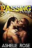Just Passing Through: Military Romantic Suspense Novella (A Contemporary Military Romance Story)
