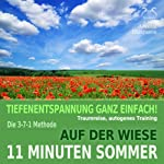 11 Minuten Sommer: Tiefenentspannung ganz einfach! Auf der Wiese - Traumreise, Autogenes Training | Franziska Diesmann,Torsten Abrolat