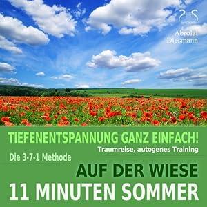 11 Minuten Sommer Hörbuch