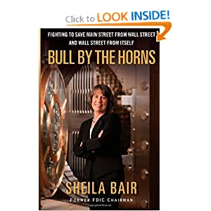 Bull by the Horns: Fighting to Save Main Street from Wall Street and Wall Street from Itself e-book