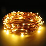 #8: USB copper LED string lights, 5m 50 LEDs, Waterproof Indoor String Light Outdoor Diwali, Christmas Lights Waterproof Starry String Lights for DIwali,Christmas, Party, Holiday, Halloween(Warm white)