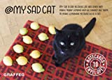img - for My Sad Cat Notecards: 10 cards and envelopes book / textbook / text book