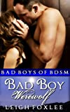 Bad Boy Werewolf: Bad Boys of BDSM (Werewolf New Adult BDSM Romance. Bad Boys of BDSM.)