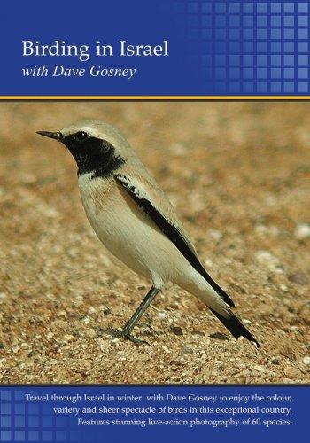 Birding in Israel (PC)