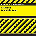 Invisible Man: CliffsNotes Audiobook by Durthy A. Washington Narrated by Tim Wheeler
