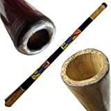 """Solid Wood Didgeridoo, Beeswax Mouthpiece - 52"""" Long - Hand Painted Sunrise Gecko - Key of C-E"""
