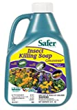 Lawn & Patio - Safer Brand 5118 Insect Killing Soap - 16-Ounce Concentrate