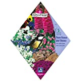 [春・秋まき 花タネ][フランス花の種]小鳥のための多年草ガーデンミックス*