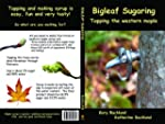 Bigleaf Sugaring: Tapping the western...