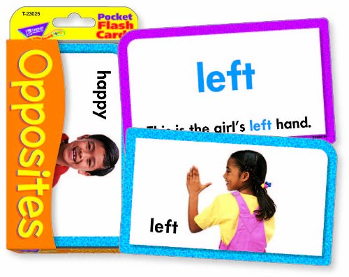 Opposites Opuestos Pocket Flash Cards