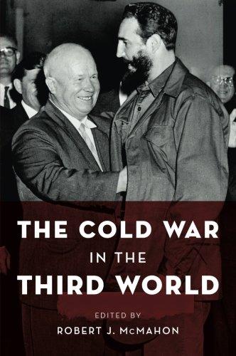 The Cold War in the Third World (Reinterpreting History)
